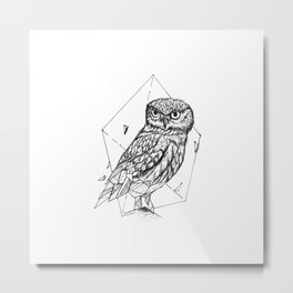 Geometric Season1:9 Owl Metal Print