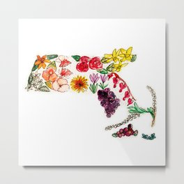 Hand Painted Massachusetts State Map Metal Print