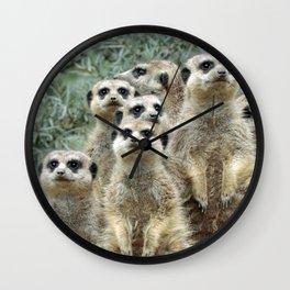 Meerkat20170501_by_JAMFoto Wall Clock