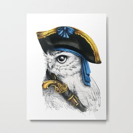 Captain Hoo Metal Print