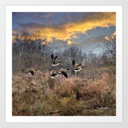 Sunset Geese Landscape Art Print