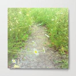 Nature's Path Metal Print