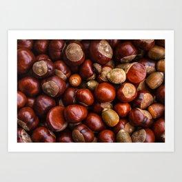 Castanea Chestnuts Nuts pattern Art Print