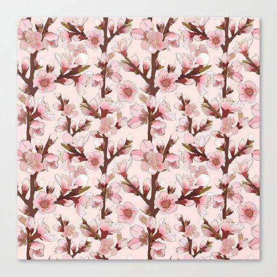 Cherry Blossom #16 Canvas Print