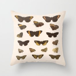 Vintage Scientific Hand Drawn Illustration Anatomy Of Butterfly Insect Patterns Biology Art Throw Pillow