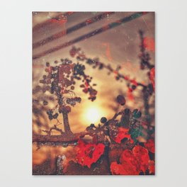 Play of the Game Canvas Print