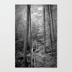 In the thick of it Canvas Print