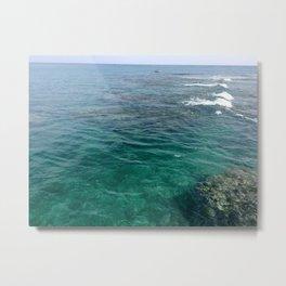 see life, sea life  Metal Print