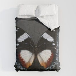 Madagascan Diadem Butterfly Comforters