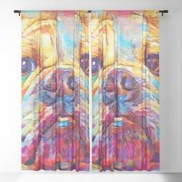 Bulldog 6 Sheer Curtain