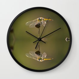 Water reflection of a yellow dragonfly Wall Clock