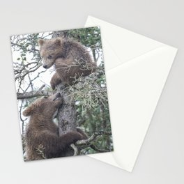 Brown Bear Cubs Stationery Cards