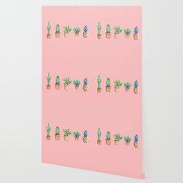 evolution cactus to pineapple pink version Wallpaper