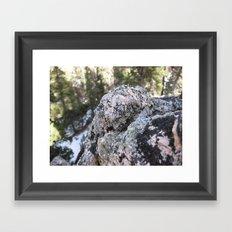 Crystalline Moss Framed Art Print