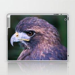 Red-tailed Hawk Laptop & iPad Skin