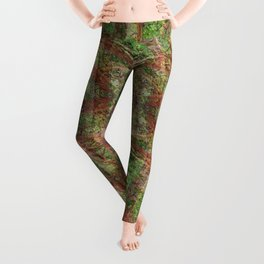 LOST IN MADRONA TREE WOODLAND Leggings