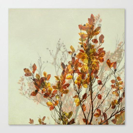 autumn symphonies I Canvas Print