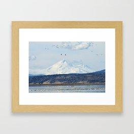 Mt Shasta and Waterfowl Framed Art Print