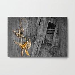 Milkweed Pods and Barn Wall Metal Print