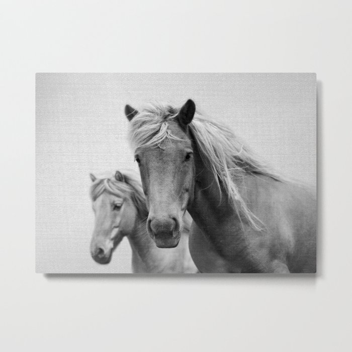 Horses - Black & White Metal Print