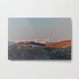 Sunset at spruce forest and mountains. Metal Print