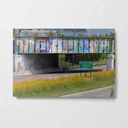 Zoo Mural Metal Print