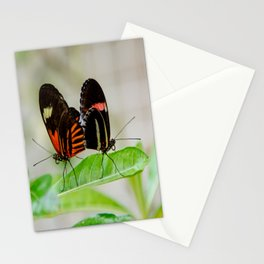 Butterfly Pair Stationery Cards