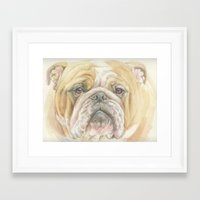 english bulldog Framed Art Prints featuring ENGLISH BULLDOG by Canisart