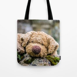 The lonely teddy Tote Bag