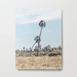 El Palmar National Park Crooked Palm Trees | Entre Rios, Argentina | Travel Landscape Photography Metal Print