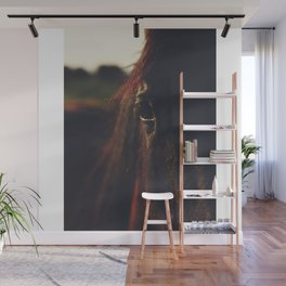 Horse photography, high quality, nature landscape fine art print Wall Mural