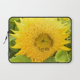 Teddy Bear Sunflower Alternate Perspective Laptop Sleeve