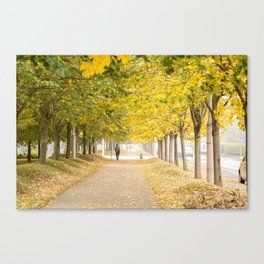 Walking under the trees in Autumn I Canvas Print