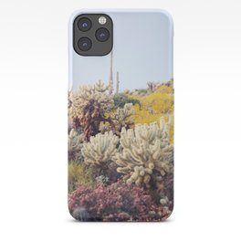 Arizona Color iPhone Case