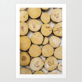 Chopped Timber Log Abstract Art Print