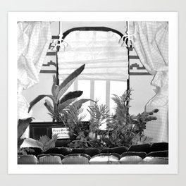 20/ View From A Shoe Box by Mandy Potter Art Print