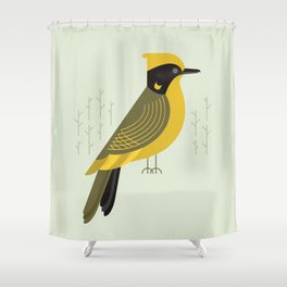 Helmeted Honeyeater, Bird of Australia Shower Curtain