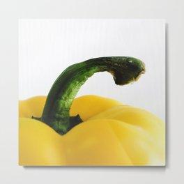 Yellow Pepper Metal Print