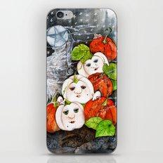 Painted Pumpkins iPhone & iPod Skin