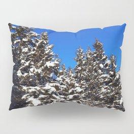 Winter Greens and Blue Sky Pillow Sham