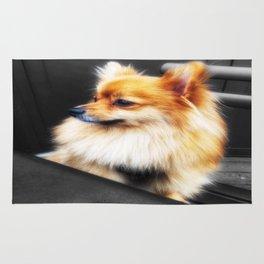 Fantastic Little Fox Rug