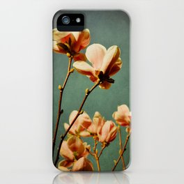 when there was spring iPhone Case