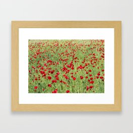 A Pasture Of Red Poppies and Remembrance Framed Art Print