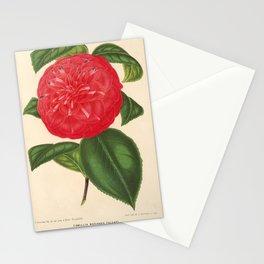 Flower camellia marianna talenti6 Stationery Cards