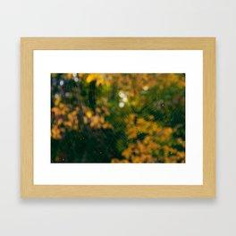 Fall's Web Framed Art Print