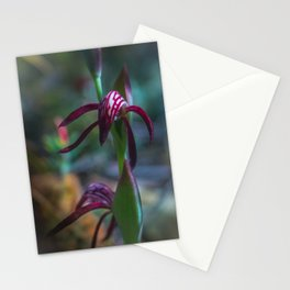 Orchid Flower Stationery Cards
