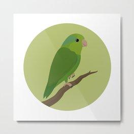 Pacific Parrotlet Metal Print