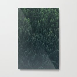 A very dense location of the mountain forest on the alpine altitude Metal Print