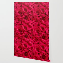 Red Roses Fine Art Photography, Flower Wallpaper