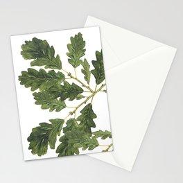 Oak leaf ensemble Stationery Cards